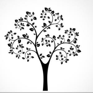 adesivo_murale_albero