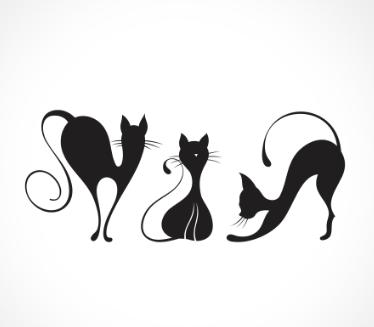 adesivo_murale_gatti