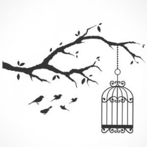 adesivo_murale_uccelli